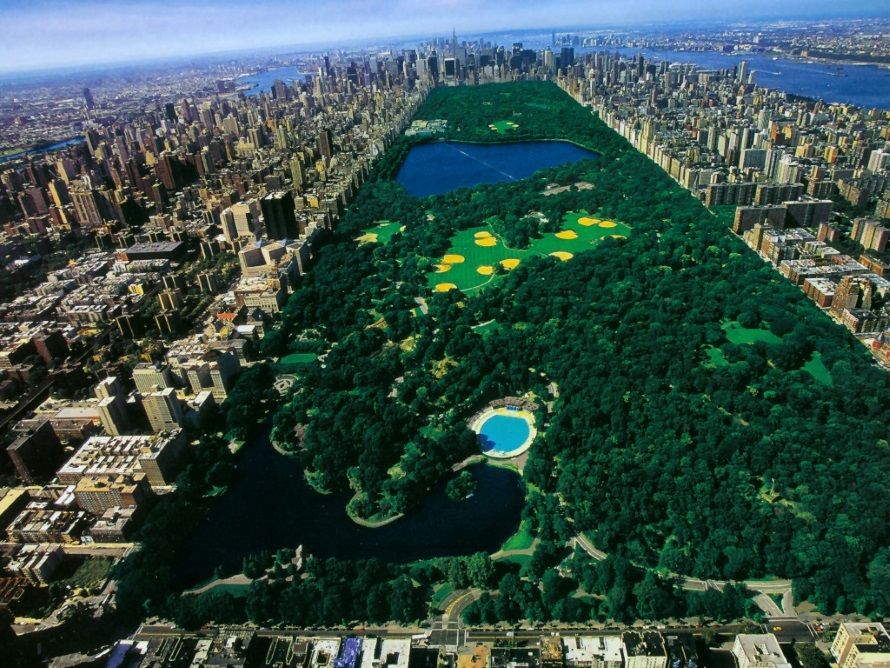 New York - Central Park (tripnewyork.nl)