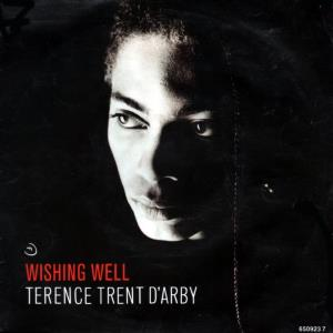 Terence Trent D'Arby - Wishing Well maxi-single (45cat.com)