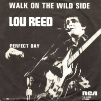 Lou Reed - Walk On The Wild Side (single) (45cat.com)