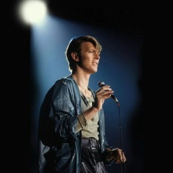 David Bowie - Live 1978 (onvacations.co)