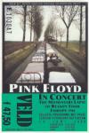 Pink Floyd 06/14/1988 concert ticket (apoplife.nl)