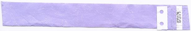 20111108 Prince polsband