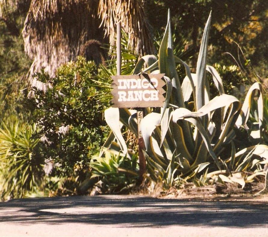Indigo Ranch Studios Malibu (gloriacavalera.com)