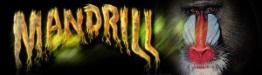Mandrill (mandrillmusic.com)