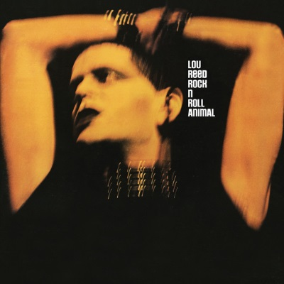Lou Reed - Rock N Roll Animal (discogs.com)