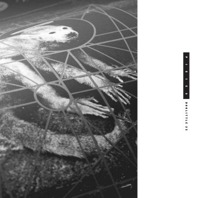 Pixies - Doolittle 25 (amazon.com)