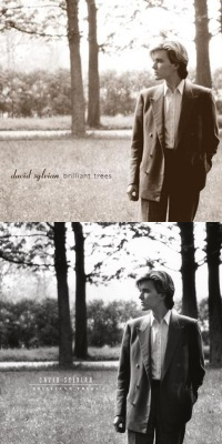 David Sylvian - Brilliant Trees - Heruitgave 2003 en 2019 (apple.com/apoplife.nl)
