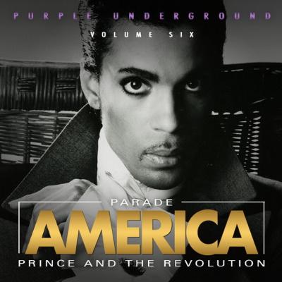 Prince - Purple Underground Volume Six - Bootleg (apoplife.nl)