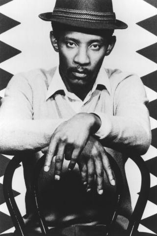 Linton Kwesi Johnson (spotify.com)