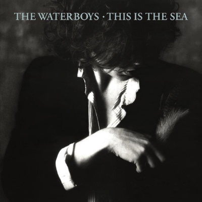 The Waterboys - This Is The Sea (warnermusic.com)