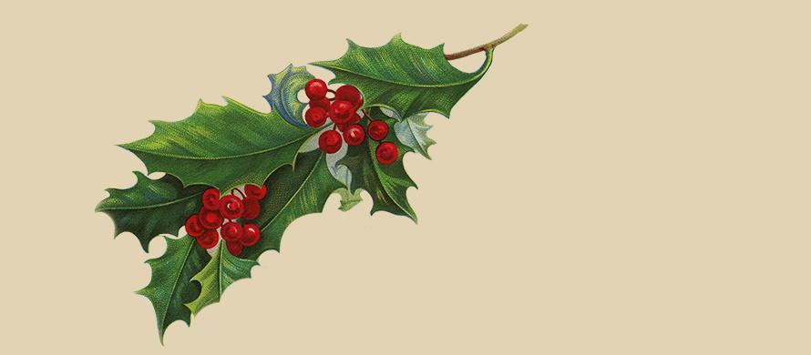 LCD Soundsystem - Christmas Will Break Your Heart - Header (apoplife.nl)