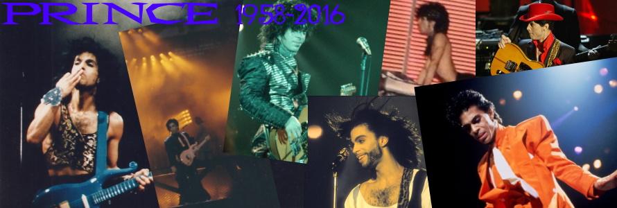 Prince IM 5 jaar (apoplife.nl)